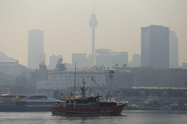 山火烟雾笼罩悉尼