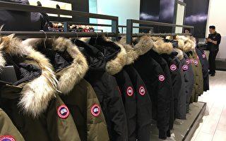 """反""""加拿大鹅""""广告被撤 动物保护组织告多伦多市府"""