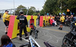 加拿大气候政策抗议者占据公路干扰交通