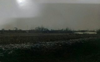 遼寧1400頭病豬埋田地 兩千村民飲用污水