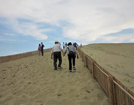 中田岛砂丘,游客沿着竹栅砂道一路往上攀爬。