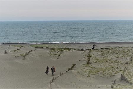 往中田岛沙坵顶端攀登,爬到最高点时就看见太平洋了。