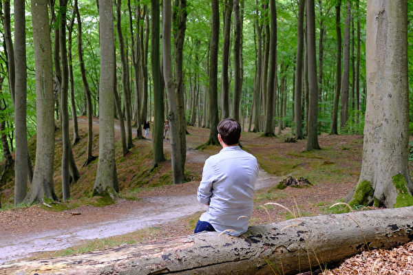 肺為相府之官,為心君之下、萬人之上的大宰相,怎樣才能養好肺?(Shutterstock)