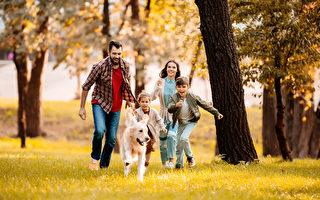 研究:養狗可能延壽 死于心臟病機率降低