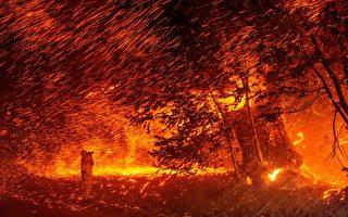 北加州金凱德大火24小時擴一倍  州長宣布緊急狀態