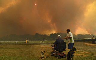 澳洲大火肆虐 數十起無法控制 悉尼告急