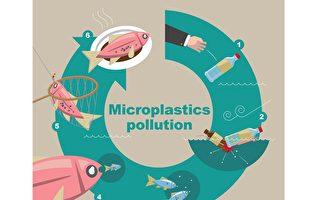 減少五大湖微塑料 研究員呼籲這樣做