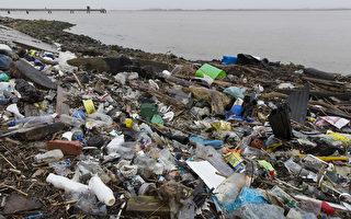 俄勒冈州大多数贝类中含微塑料