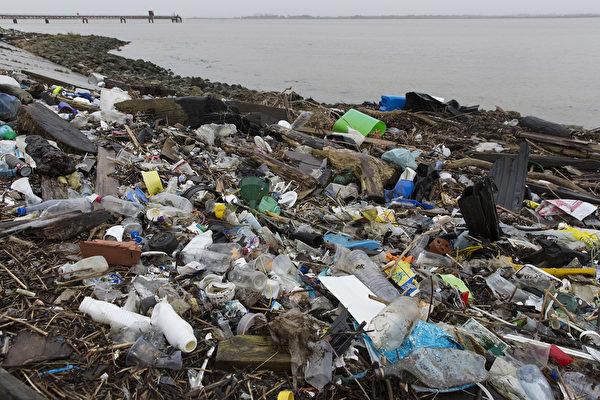 俄勒岡州大多數貝類中含微塑料