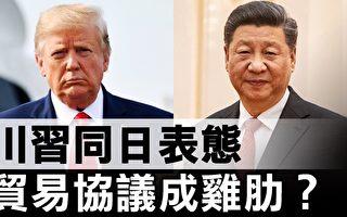 """【热点互动】美中贸易谈判已成""""面子工程""""?"""