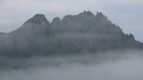 台湾推脊梁山脉旅游 专家赞阿里山景美好玩