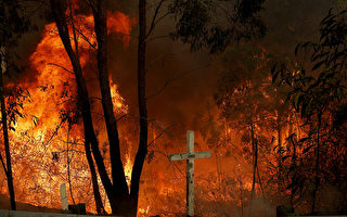 新州警方怀疑12处山火为蓄意点燃