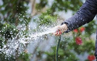 澳洲乾旱 新州下月10日實施嚴厲二級限水