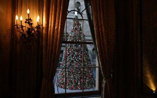 圣诞季将至 如何选圣诞树?何时买最划算?
