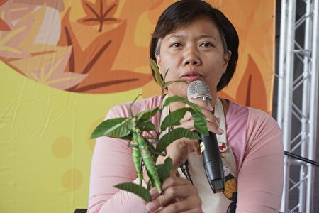 木生昆虫馆第四代的馆长余利华介绍体验行程。