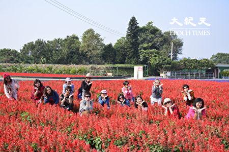 來自馬來西亞的遊客開心地在「一串紅」的花田中拍照。