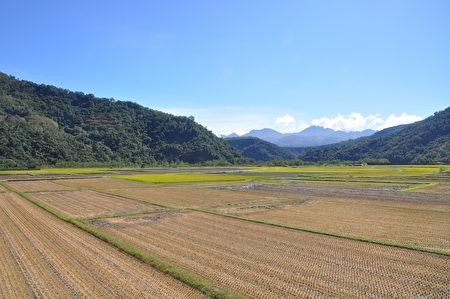 南安部落生態農業的地景地貌。