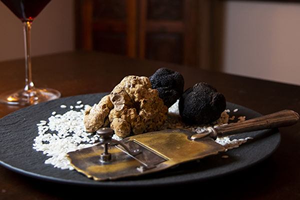 TURIN, ITALY - JANUARY 08: White Alba Truffle and Black Truffle: don't miss it when you come to Piemonte. (Photo by Giorgio Perottino/Getty Images)
