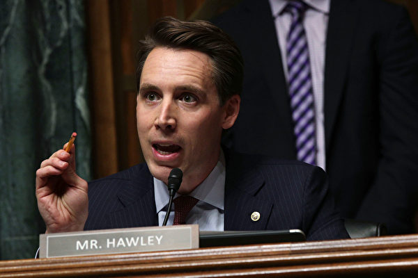 圖為參議員霍利。(Alex Wong/Getty Images)
