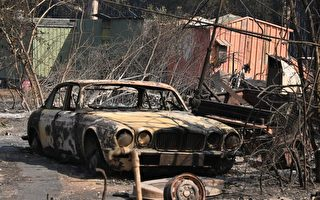 澳大利亚森林大火蔓延 3死数千人疏散