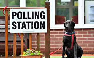 你選民登記了嗎?