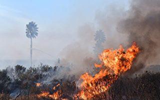 大风下 加州野火四起 多数获围控
