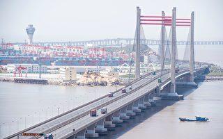 数字经济加持 上海自贸区为何仍不被看好