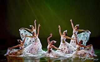 刘丽丽舞蹈团慈善公演 再为失亲憨儿起舞