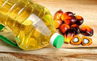 經高溫處理的植物油加工食品,特別是棕櫚油含有甘油二酯,加工後將成為具致癌性的縮水甘油脂肪酸酯。(Shutterstock)