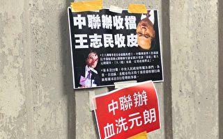 香港区选建制派惨败 传王志民将被撤换