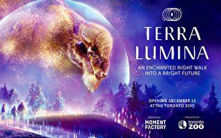 動物園燈展12月13日開幕 3歲以下免費
