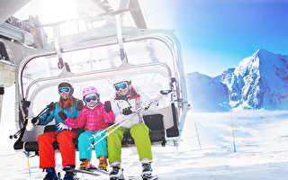 週末好去處(11月8日~10日)滑雪展 健康展 茶文化節