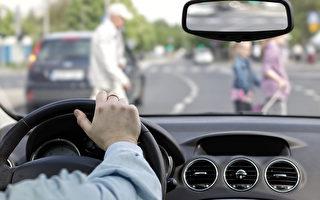 今年超千人被车撞 多市府行动 发袖章 降限速