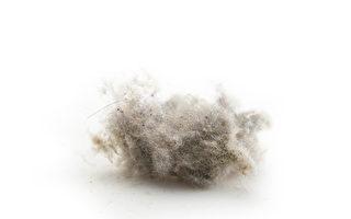 研究:数十亿衣物微纤维流入废水中 或危害健康