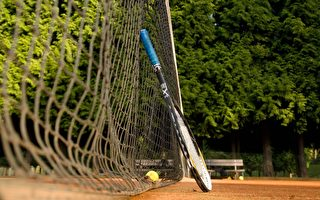 為建網球場 墨爾本海灣業主不惜「燒錢」365萬