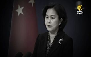 華春瑩證實公安部子女赴美簽證被拒