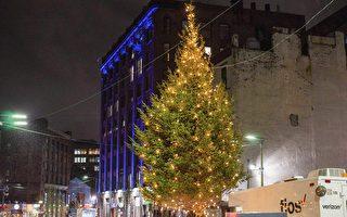 波城華埠聖誕樹點燈 居民熱鬧迎佳節