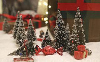 素里慈善机构圣诞礼物被盗窃