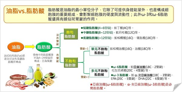 油脂分為飽和脂肪酸和不飽和脂肪酸。(Stella營養師提供)