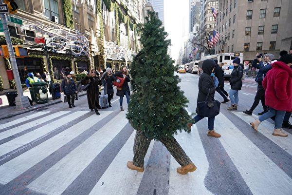 US-HOLIDAY-CHRISTMAS-TREE-OFFBEAT