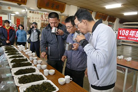 全國冬片茶製茶競賽初評。