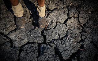 皮尔河即将干涸 新州政府决定断流以保水供