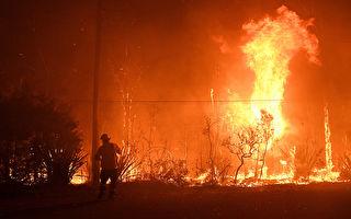 悉尼周邊多處山火失控 居民被促儘快撤離