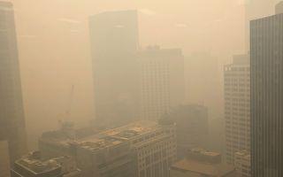 """浓烟重返悉尼 空气质量超""""危险""""水平11倍"""