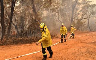 新州調查山火起因 逾十名縱火嫌犯即將被控