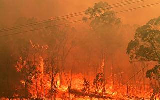 新州两消防员救火途中亡 总理致哀 终止休假