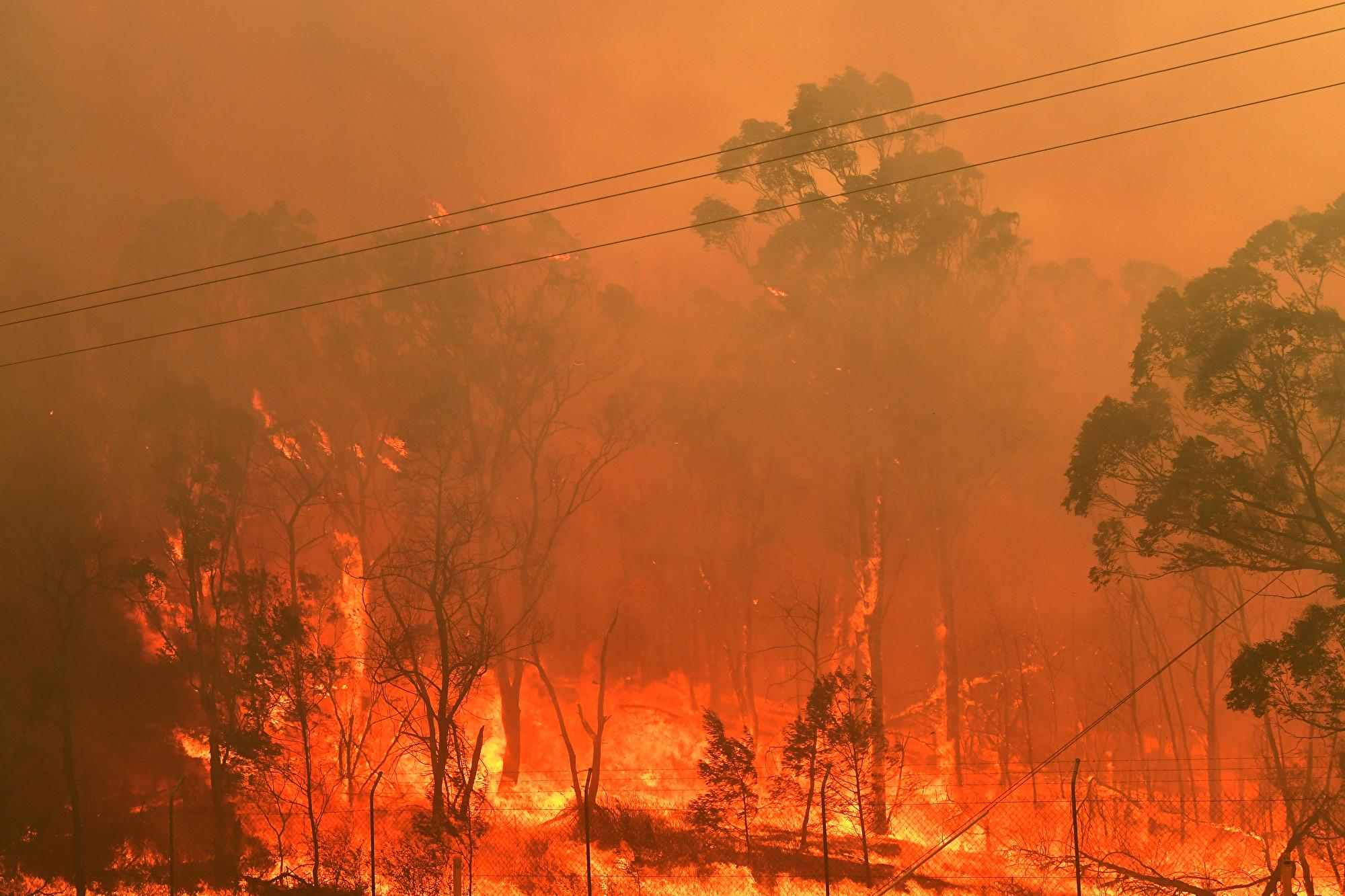 澳洲旱災山火致嚴重缺水 中企抽地下水牟利