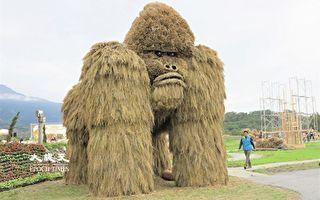 花莲第一届稻草艺术季  银背猩猩富里现踪