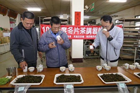 全國冬片茶製茶競賽複評。