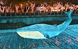 屏东彩灯节 1/3登场  万年溪变身夜间动物园
